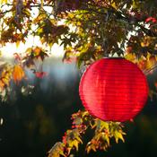 "Red - Soji Original Round Nylon Solar Lantern 10"""