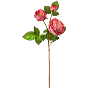 Pink - English Rose X2 + Bud 28""