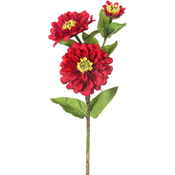 Red - Zinnia Spray X3 24""