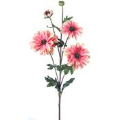 "Pink - Shasta Daisy X3 + Bud 24"""