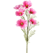 Pink - Cosmos Spray X6 30""