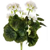 """White - Geranium Bush X6 14"""""""