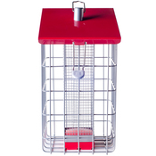"""8.7""""H x 7.1""""W x 8.1""""D - The Nuttery Geohouse Peanut/Sunflower Seed Feeder"""
