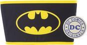 "Batman - Everything Mary DC Comics Collapsible Tub 11.5""X6.5""X7"""