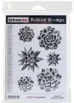 """Succulents - Darkroom Door Cling Stamps 7""""X5"""""""