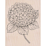"Large Hydrangea - Hero Arts Mounted Rubber Stamp 5.75""X4.5"""