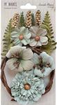 """Aloe - Seaside Blooms 1.5""""-2.25"""" 16/Pkg"""