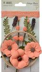 """Cantaloupe - Cottage Blooms 2"""" 12/Pkg"""