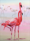 "11.75""X15.75"" 14 Count - Flamingo Stamped Cross Stitch Kit"