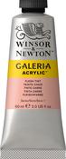 Flesh Tint - Winsor & Newton Galeria Acrylic Color 60ml