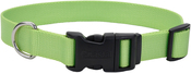 "Lime, Neck Size 8""-12"" - Adjustable Nylon 3/8"" Dog Collar W/Tuff Buckle"