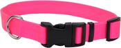 "Neon Pink, Neck 8""-12"" - Adjustable Nylon 3/8"" Dog Collar W/Tuff Buckle"