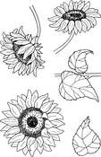 "Sunflowers - Jane's Doodles Clear Stamps 4""X6"""