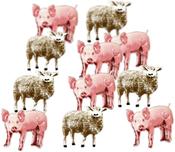 Pig & Sheep - Eyelet Outlet Shape Brads 12/Pkg