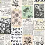 Floribuna 12 x 12 Specialty Paper - Flourish - Maggie Holmes