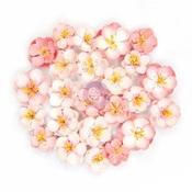 Serene Flowers - Cherry Blossom - Prima