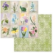 Springtime Paper - Cottontail - Bo Bunny