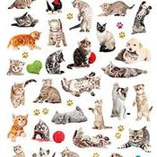 Cats - Paper House Life Organized Micro Stickers