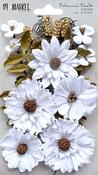 Snow - 49 And Market Botanical Blends 23/Pkg