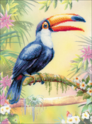 "Toucan (14 Count) - RIOLIS Counted Cross Stitch Kit 11.75""X15.75"""
