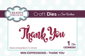 Mini Expressions-Thank You - Creative Expressions Craft Dies By Sue Wilson