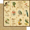 Tropical Travelogue Deluxe Collectors Edition - Graphic 45
