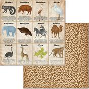 Animals Paper - Jungle Life - Bo Bunny