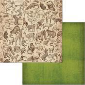 Wildlife Paper - Jungle Life - Bo Bunny