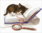 """Kitten On The Booklet (14 Count) - RIOLIS Counted Cross Stitch Kit 11.75""""X9.5"""""""