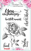 You Are Amazing - Mother Of Pearl Stamp