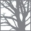 Branching Out - Americana Mixed Media Stencil 12 X12  Create timeless furniture and home decor pieces with these flexible stencils made for durability and ease of use with either paints or texture products. This package contains one 12x12 inch stencil. Comes in a variety of designs. Each sold separately. Imported.