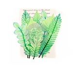 Leaf Embellishments - Mountain Pine - Prima