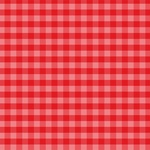 Holly Berry Gingham Paper - Christmas Gingham - Echo Park