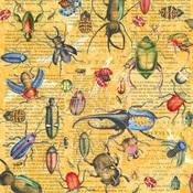Serendipitous Paper - Flutter - Graphic 45