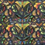 Vivacious Paper - Flutter - Graphic 45