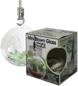 Mini Blown Glass Hanging Terrarium