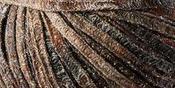 Toffee - Sugar Bush Yarn Glaze
