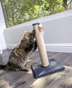 Petlinks Crackle Scratch Post Cat Scratcher