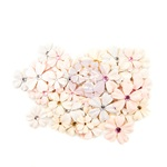 Provincial Lavender Flowers - Lavender Frost - Prima