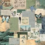 Authentic Paper - Scrap Studio - KaiserCraft
