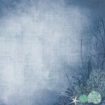Sea Shell Paper - Deep Sea - KaiserCraft - PRE ORDER