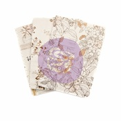 Pretty Pale PTJ Passport Notebook Inserts - Prima