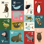 M-Z Animal Alphabet Cards Paper - Animal Safari - Echo Park
