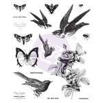Finnabair Cling Stamp Wild And Free