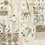 Collect Moments Paper - Simple Vintage Botanicals - Simple Stories - PRE ORDER