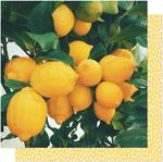 Lemon Drop Paper - It's All Good - Dear Lizzy