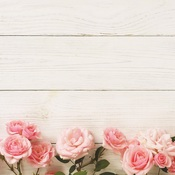 Pink Roses Paper - Made With Love - Reminisce