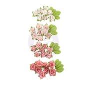 Raspberry Kisses Fruit Paradise Flowers - Prima