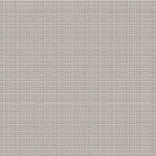 Oyster Graph & Dot Paper - Bella Besties - Bella Blvd