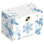 Winter Wonderland Boxed Card Set - DCWV